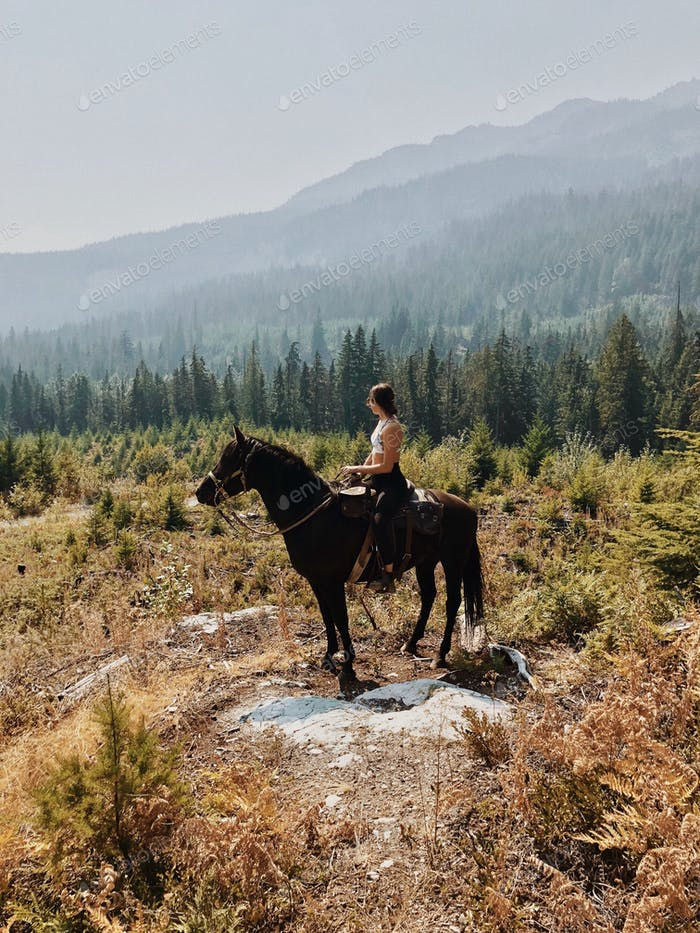 Horseback riding in the alpine country of Whistler bc