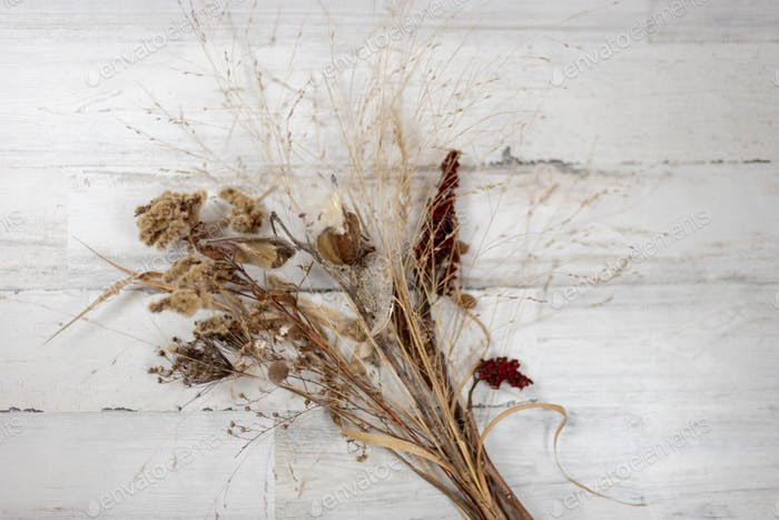 Winter bouquet of dried grasses