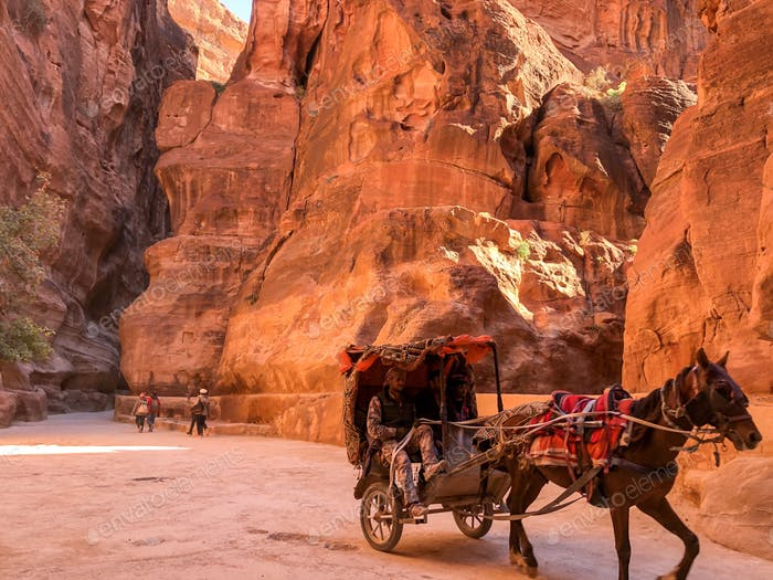 Traveling through the Al Siq via horse carriage like in the olden days