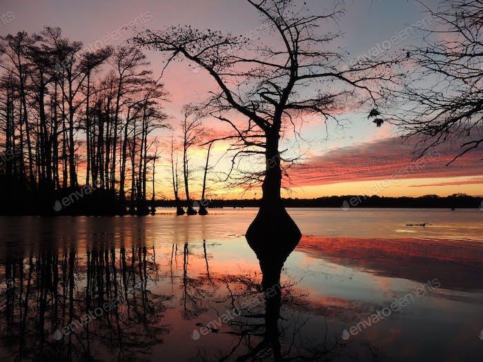 Sunset on  Reelfoot Lake, TN