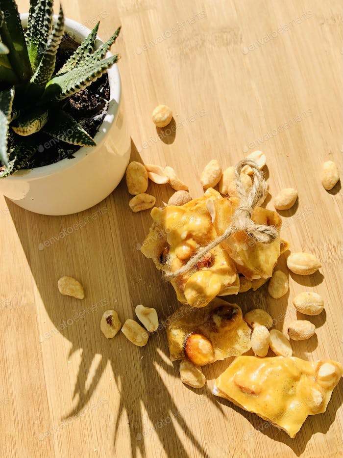 Homemade peanut brittle with a small succulent plant on a wooden counter.