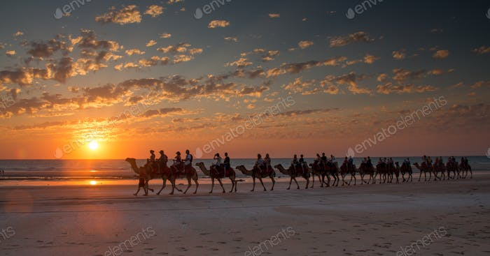 Sunset camel ride Cable Beach, Broome, Western Australia