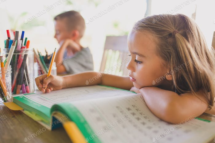 Little girl doing homeschool