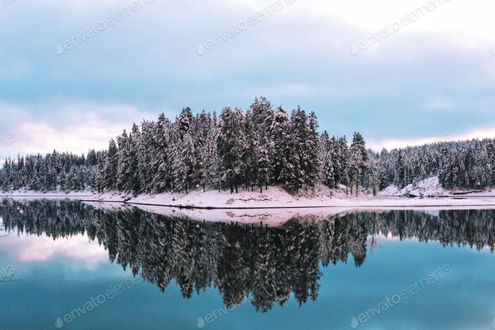 Glassy winter River with snowy trees