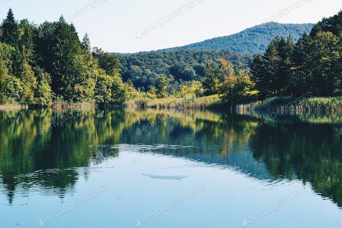 Reflexión natural