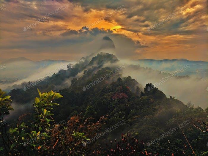 Malaysian mounds