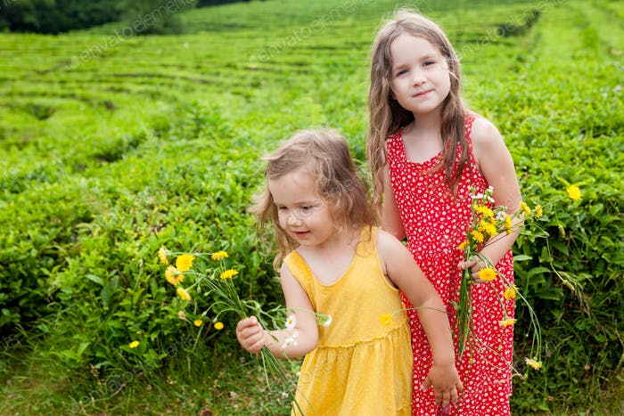 two little sisters girls in sundresses having fun on tea plantations