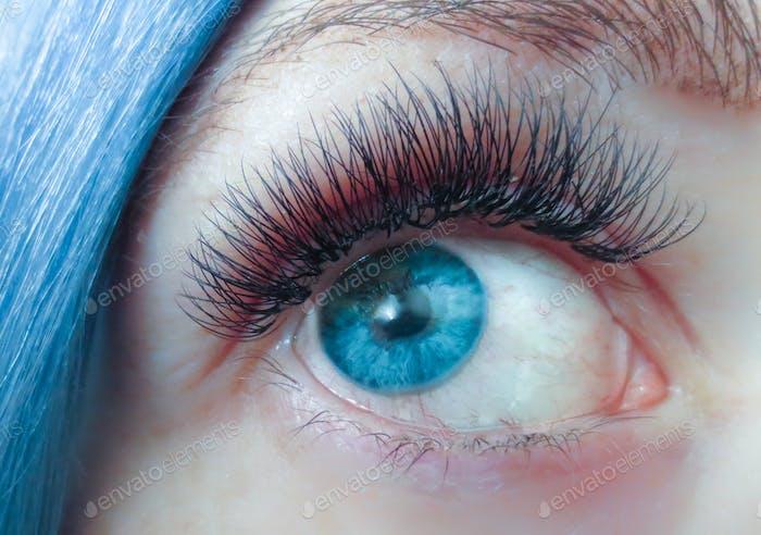 Blue eye. Long lashes. Eye lash extensions. Blue eyes. Looking up.