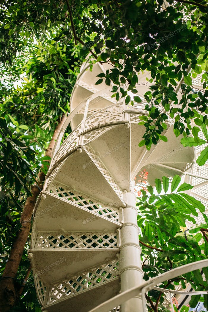 Greenhouse Spiral Staircase