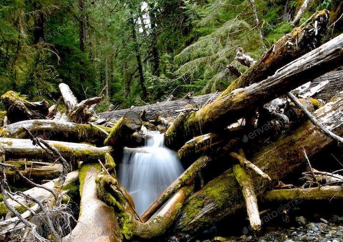 Long exposure waterfall stream