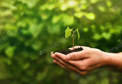 Concept of the environment World Earth Day. Protect clean planet, saving environment and ecology.