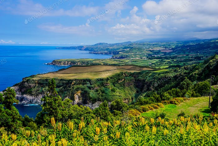 Northern coastline of Sao Miguel en on the islands of the Azores in Portugal.