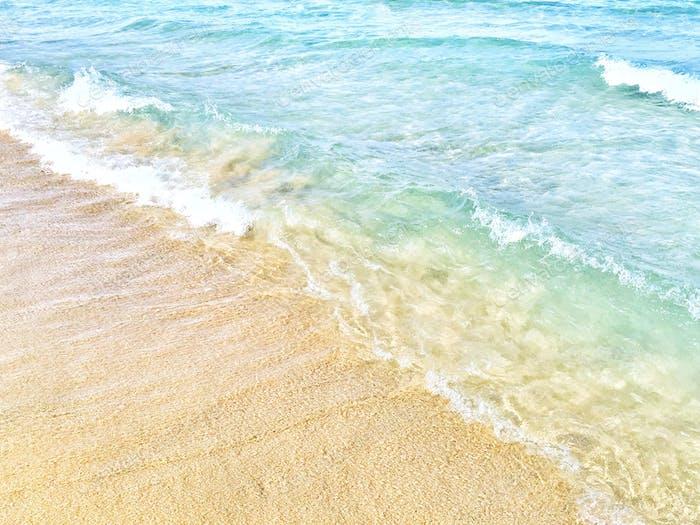 Dreamy shoreline 💙🌴🐚