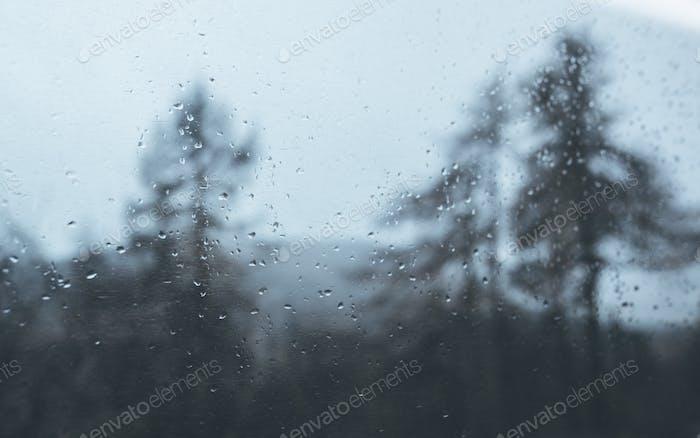 Rainy train ride