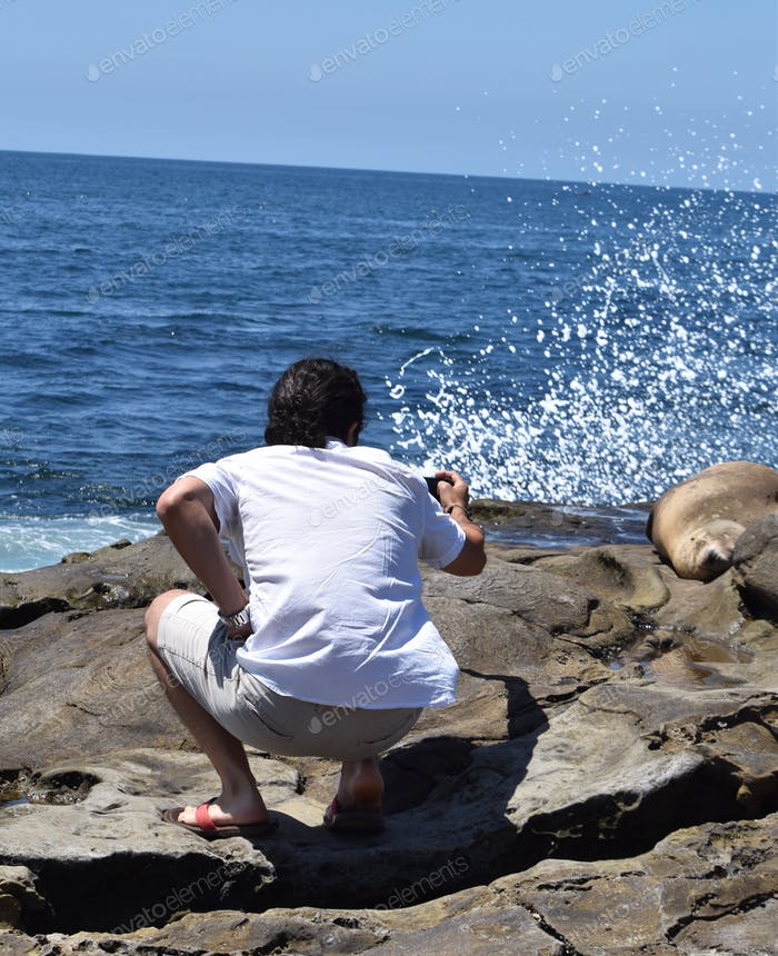 Young man Taking pictures of seals being splashed by the sea spray