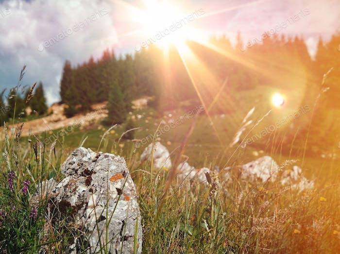 Mountain flares...