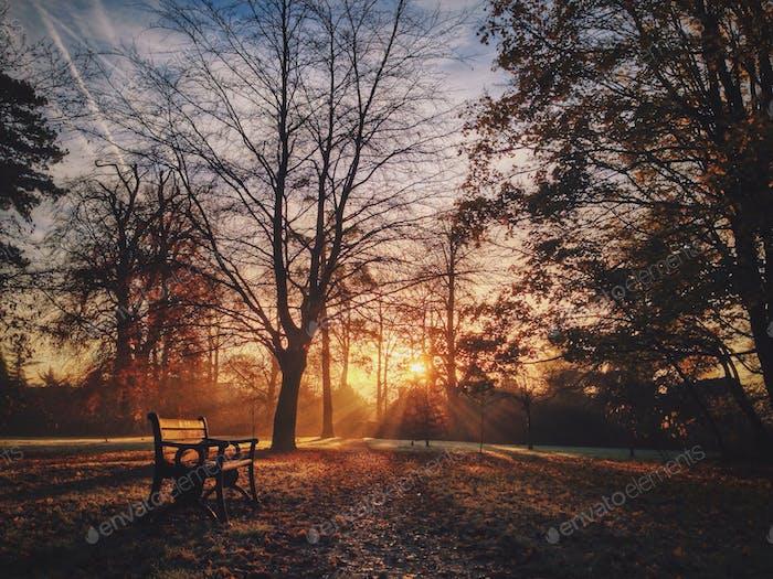 Beech Hurst park, Andover