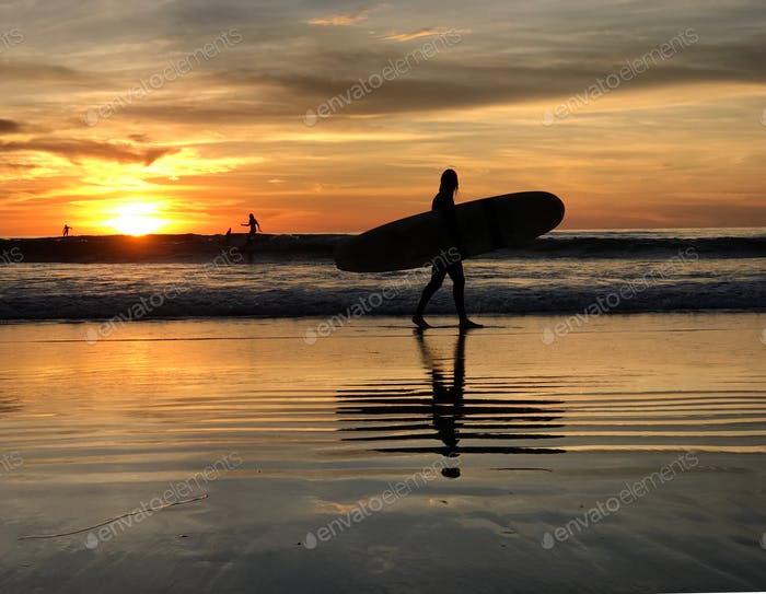 Silhouette of a Surfer on the shoreline with his surfboard at sunset.  **Nominated**