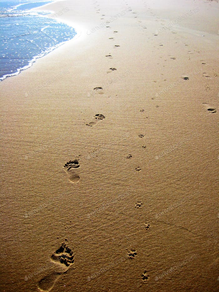 New Beginnings - Footsteps