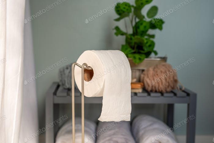 Roll of toilet paper on a dispenser in the bathroom