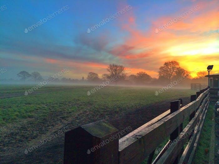 Dawn Cometh