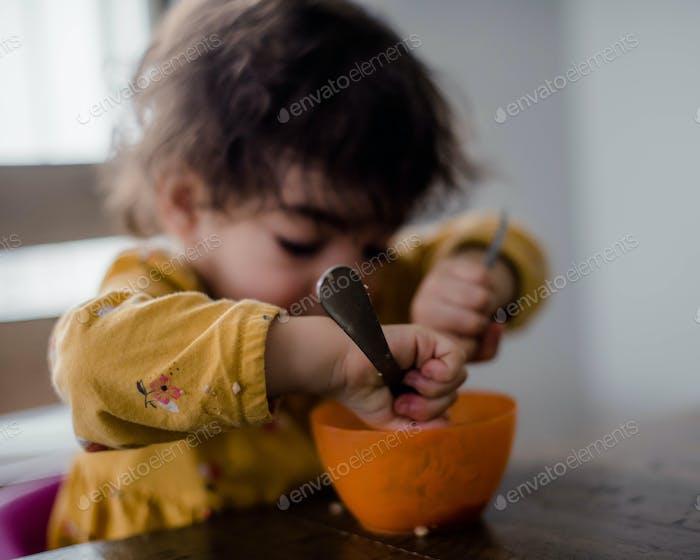 Toddler at mealtime