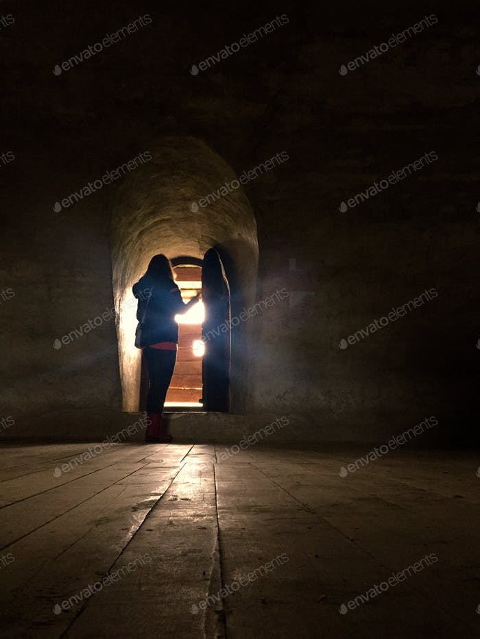 Silhouette of woman opening up a door