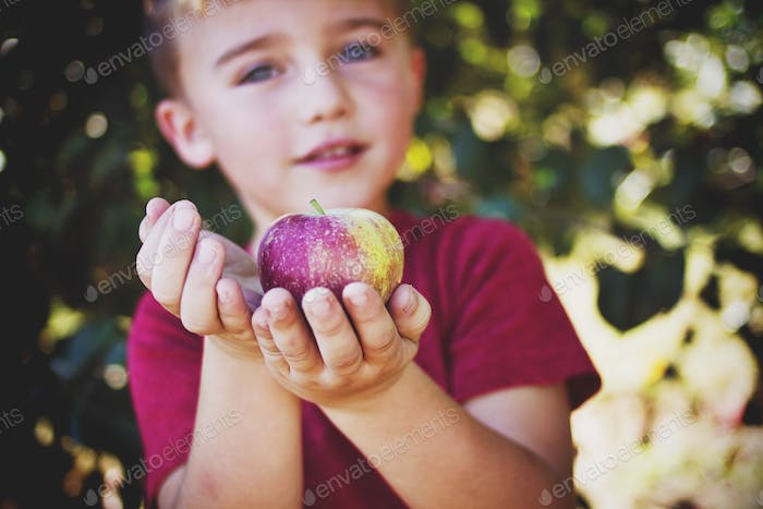 Holding an Apple at the orchard