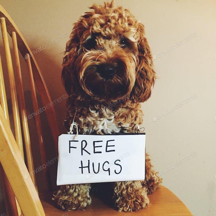 Frei umarmt alle!