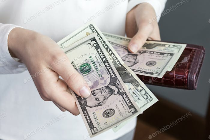wallet and money, purse, greenback, business, wealth, currency, bill, investment, dollar, cash, conc