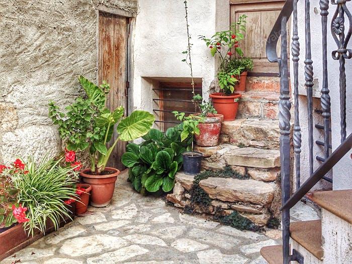 corner with pots