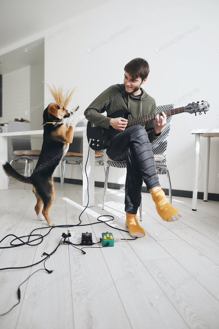 young man playing electronic guitar in sunlit room with pet - dog