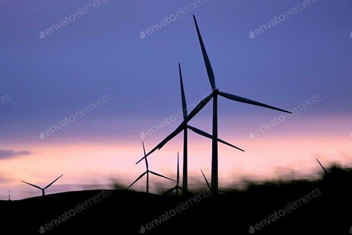 Windmills and Global Warming