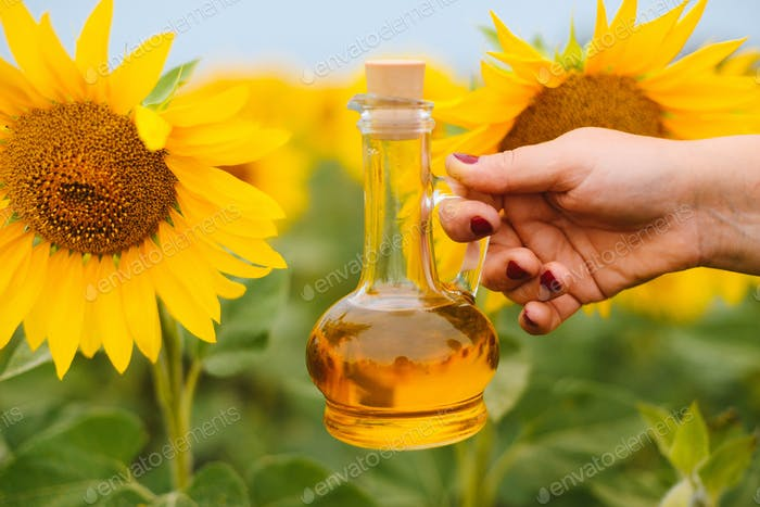 Sunflower oil in glass bottle with sunflower field on the background