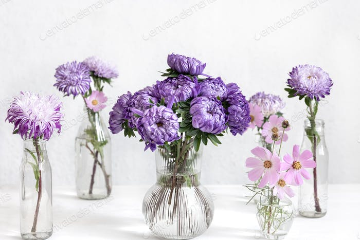 Glass vases with fresh chrysanthemum flowers on a blurred white background.