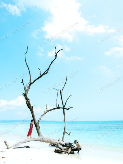 Beauty of India: the Andaman Islands crystal water