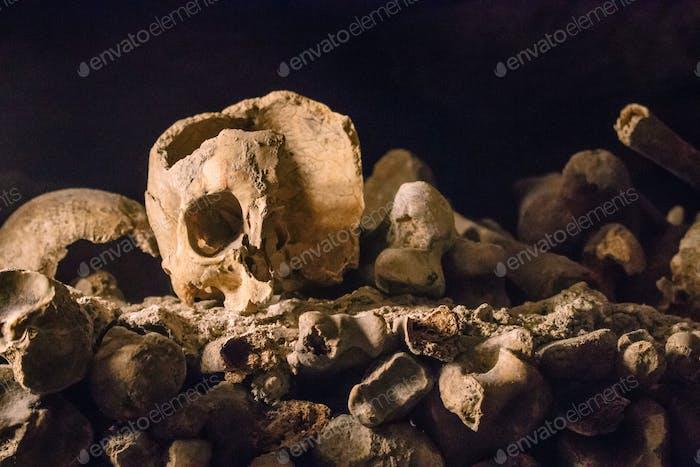 Skull in the Paris catacombs
