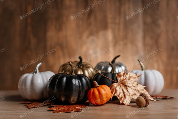 Decorated golden, black, white and silver pumpkins and leafs. Thanksgiving day or Halloween Autumn b