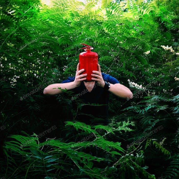 Invitado del bosque