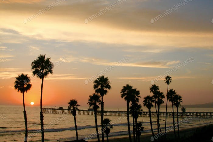 Sunset with pier and palm trees