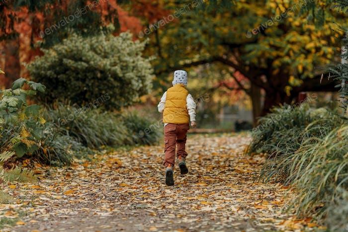 Little happy boy walks in the autumn park. Bright autumn colors.