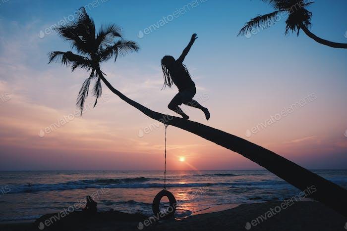 Magic palm with magic sunset