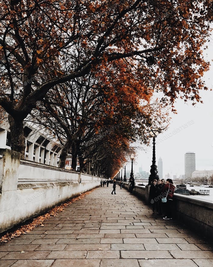 London stroll 🍂