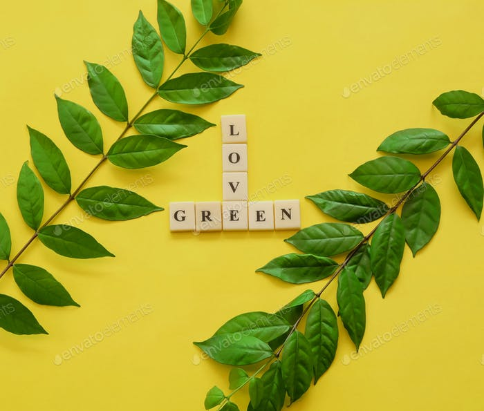 Flat lay square image of green leaves on yellow background with scripts or texts for any