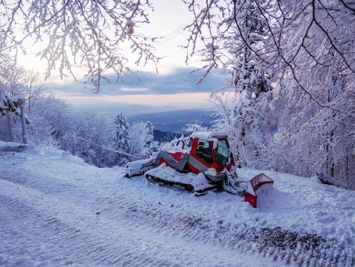 Schneekatze bedeckt im Standby an der Skiabfahrtspiste. Umgeben von schneebedeckten Bäumen und