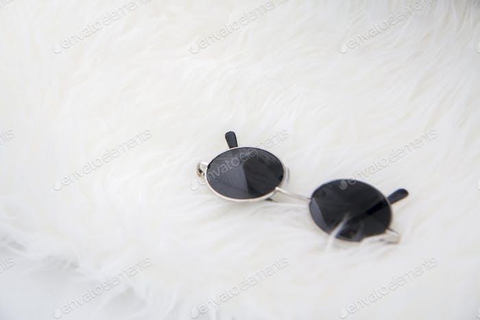 Sunglasses on white fur