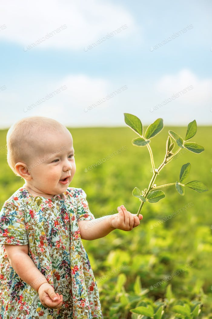 Soybean sprout in  hands of a little girl. Conservation of nature on the planet. Earth day concept