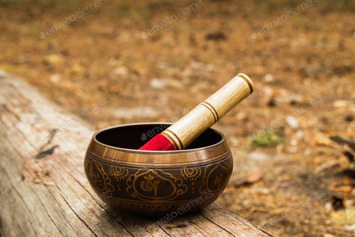 Tibetian singing bowl with wooden stick on the tree in a forest.