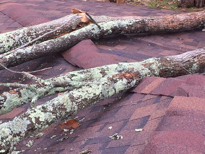 Storm damage caused a tree to fall on roof and cause roofing shingle damage