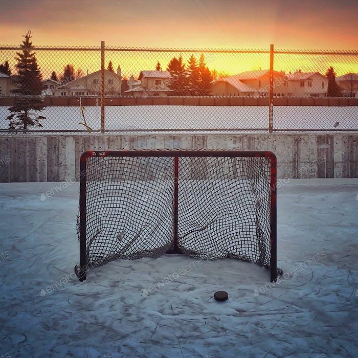 Backlit hockey net